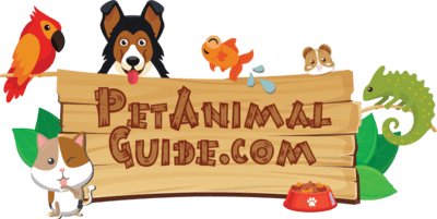 PetAnimalGuide.com